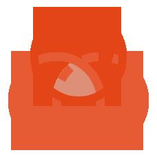 MVT icon